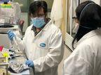 અમેરિકાની કંપનીઓ ફાઈઝર અને બાયોએનટેક વેક્સીનના ત્રીજા તબક્કાનું ટ્રાયલ શરૂ કરશે; 44 હજાર લોકોને વેક્સીન અપાશે વર્લ્ડ,International - Divya Bhaskar