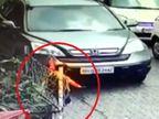મુંબઈમાં બેદરકાર કારચાલકે 3 વર્ષના માસૂમ પર કાર ચઢાવી દીધી|ઈન્ડિયા,National - Divya Bhaskar