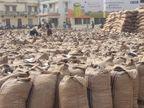 મેઘરજમાં મગફળીના 9608 કટ્ટાની આવક નોંધાઇ, 140 ખેડૂતોની મગફળી ખરીદાઇ મેઘરજ,Meghraj - Divya Bhaskar