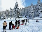 કાશ્મીરમાં 2 ફૂટ બરફ, આબુમાં 1 ડિગ્રી તાપમાન, દિલ્હીમાં 14 વર્ષમાં નવેમ્બરની સૌથી ઠંડી સવાર, તાપમાન ગગડીને 7.5 ડિગ્રી સેલ્સિયસ થયું|ઈન્ડિયા,National - Divya Bhaskar