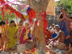 23 નવેમ્બરે આંબળા નોમ, આ દિવસે કરવામાં આવેલી પૂજા અને દાનનું ફળ ક્યારેય નષ્ટ થતું નથી|ધર્મ,Dharm - Divya Bhaskar