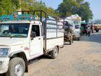 બાબરા માર્કેટીંગ યાર્ડમાં કપાસની 14 હજાર મણની મબલખ આવક|બાબરા,Babra - Divya Bhaskar