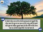 કર્મ કરવાથી ગરીબી, જાપ કરવાથી પાપ, મૌન રહેવાથી ક્લેશ અને જાગતા રહેવાથી ભયનો નાશ થાય છે|ધર્મ,Dharm - Divya Bhaskar