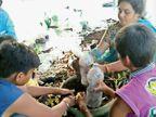 રાજકોટની શાળામાં વિદ્યાર્થીઓ ઘરેથી ફળ-શાકભાજીની છાલ, કચરો લાવી ખાતર બનાવશે, શાળામાં 10 હજાર રોપા તૈયાર કરશે રાજકોટ,Rajkot - Divya Bhaskar