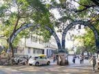રાજકોટ સિવિલમાં વિદેશ જવાનું હોવાથી કોરોનાના નેગેટિવ રિપોર્ટ મેળવવાનું કૌભાંડ ઝડપાયું, મેડિકલ ઓફિસરને જાણ થતા મહિલા મેનેજર ઝડપાઈ રાજકોટ,Rajkot - Divya Bhaskar