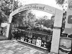પાલિકાએ વેબસાઇટની ફી ન ભરતાં લાખો રૂપિયાના વિકાસ કામના ટેન્ડર અટવાયા|ગાંધીધામ,Gandhidham - Divya Bhaskar