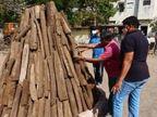 સુરતમાં ગાયના ગોબરમાંથી બનાવેલી સ્ટીકથી હોલિકા દહન કરાશે, વાતાવરણ શુદ્ધ કરવાનો અને કોરોના સંક્રમણને ઘટાડવાનો પ્રયાસ|સુરત,Surat - Divya Bhaskar