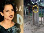 મહારાષ્ટ્રનાં લોકડાઉનની હાલત જોઇને એક્ટ્રેસે તૂટેલા શેડનો ફોટો શેર કરી લખ્યું, 'રાજ્યમાં કંઇક આવું જ લોકડાઉન છે'|બોલિવૂડ,Bollywood - Divya Bhaskar