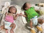 વડોદરામાં 606 કોરોનાગ્રસ્ત બાળકો હાલ સારવાર હેઠળ, છેલ્લા એક વર્ષમાં 3192 બાળકો સંક્રમિત થયાં વડોદરા,Vadodara - Divya Bhaskar