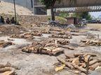 ભરૂચના કોવિડ સ્મશાનમાં મૃતદેહોની સંખ્યામાં બે દિવસમાં નોંધાયો 50%નો ઘટાડો|ભરૂચ,Bharuch - Divya Bhaskar