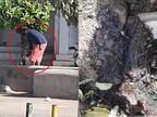 રાજકોટના સંત કબીર રોડ પરના વૃક્ષમાં એક વ્યક્તિ છેલ્લા ત્રણ દિવસથી એસિડ નાખે છે, ગાર્ડન શાખાએ પોલીસ ફરિયાદ કરવામાં આવી|રાજકોટ,Rajkot - Divya Bhaskar