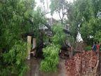 ખંભાતના દરિયાકાંઠાના ગામોમાં 250 કિ.મી.ની ઝડપે વાવાઝોડું ફૂંકાતા તબાહી|આણંદ,Anand - Divya Bhaskar