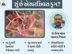 મ્યુકોરમાઇકોસિસની સાથે હવે એસ્પરઝિલસ ફૂગનું આક્રમણ, રાજકોટ સિવિલમાં 100થી વધુ કેસ, કોરોના બાદ 20થી 40 દિવસ પછી આ ફૂગ થવાની શક્યતા|રાજકોટ,Rajkot - Divya Bhaskar
