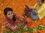 સુરભી અને રાજીવ બંસલનું સ્ટાર્ટઅપ નિર્મલયા પ્રદૂષણને અટકાવવા માટે મંદિરના ફૂલોનું રિસાઈક્લિંગ કરીને અગરબત્તી અને હવન કપ બનાવે છે|લાઇફસ્ટાઇલ,Lifestyle - Divya Bhaskar