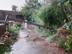 હિંમતનગરમાં 2 કલાકમાં પોણો ઇંચ વરસાદ, પોશીનામાં 5 મીમી|મહેસાણા,Mehsana - Divya Bhaskar