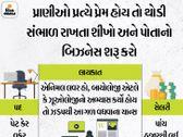 પાલતું જાનવરો માટે લોકો પૈસા આપવા તૈયાર, મહિલાઓ હવે શરૂ કરી રહી છે આ બિઝનેસ જોબ્સ એટ હોમ,Jobs at Home - Divya Bhaskar