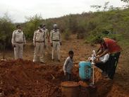 तस्करों ने जमीन के अंदर गाड़ कर रखे थे शराब से भरे ड्रम, पुलिस ने जेसीबी से खुदाई करके निकलवाए, शराब बनाने वाली 15 भटि्टयां भी नष्ट कीं|ग्वालियर,Gwalior - Money Bhaskar