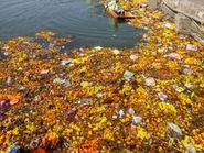 प्रतिबंध के बावजूद नदी में मूर्ति विसर्जन, होमगार्ड, पुलिस और निगमकर्मी घाट पर होने के बाद भीनहीं माने लोग उज्जैन,Ujjain - Money Bhaskar