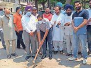 फेज-7 के पार्क में रोड गलियों की रिपेयर का काम शुरू|मोहाली,Mohali - Dainik Bhaskar