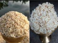 बिहार में उगने वाला एक खास तरह का चावल है मैजिक राइस, इसे सादे पानी में डालने पर ही यह पक जाता है|लाइफस्टाइल,Lifestyle - Dainik Bhaskar