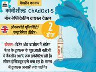 DCGI की जांच में कोवीशील्ड वैक्सीन को क्लीन चिट; वॉलंटियर की खराब सेहत के लिए वैक्सीन जिम्मेदार नहीं|देश,National - Dainik Bhaskar
