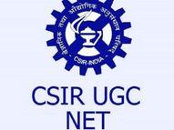 NTA ने जारी की ज्वाईंट CSIR-UGC नेट की 'आंसर की', 5 दिसंबर तक आपत्ति दर्ज करा सकते हैं कैंडिडेट्स|करिअर,Career - Dainik Bhaskar