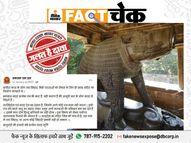 लव जिहाद को रोकने के लिए प्राचीन काल में हुआ वराह मंदिर का निर्माण? जानिए इस वायरल पोस्ट का सच|फेक न्यूज़ एक्सपोज़,Fake News Expose - Dainik Bhaskar