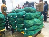 वाराणसी के मटर और बैगन का स्वाद चखेंगे शारजाह लोग, एक हजार केजी का कंसाइमेंट एयरपोर्ट से किया गया रवाना वाराणसी,Varanasi - Dainik Bhaskar