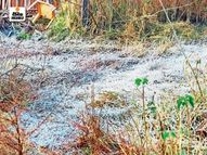 पूर्वी मध्यप्रदेश में तेज ठंड तो पश्चिमी MP में चढ़ा पारा, सूरत में विजिबिलिटी 100 मीटर से भी कम|देश,National - Dainik Bhaskar