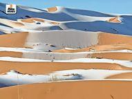 सहारा रेगिस्तान पर बर्फ की चादर, तापमान -3 डिग्री पहुंचा, 50 साल का रिकॉर्ड टूटा|विदेश,International - Dainik Bhaskar