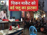 कोरोना की मार से किसी तरह संभले थे अब बर्ड फ्लू आ गया, दाम तो नहीं लेकिन 75 प्रतिशत तक टूट गया कारोबार|रायपुर,Raipur - Dainik Bhaskar