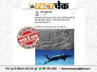 प्राचीन काल में भारत में हुई थी स्कूबा डाइविंग की खोज? पड़ताल में झूठा निकला दावा|फेक न्यूज़ एक्सपोज़,Fake News Expose - Dainik Bhaskar