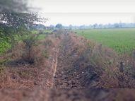 सीएम हेल्पलाइन तक ग्रामीणों ने शिकायत की, इसके बाद भी न पानी मिला न नहरें सुधरीं|भोपाल,Bhopal - Dainik Bhaskar