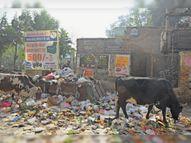 स्थायी व अस्थायी कर्मचारियों ने सफाई कार्य का बहिष्कार कर निकाला रोष मार्च, आज नगरपरिषद पर करेंगे प्रदर्शन|श्रीगंंगानगर,Sriganganagar - Dainik Bhaskar