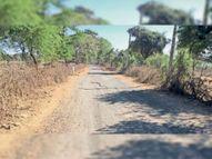 चांचौड़ा से ऊमरथाना; मेहराजपुरा होकर राजस्थान को जोड़ने वाली 10 किमी सड़क हुई जर्जर, आवागमन होता है बाधित|गुना,Guna - Dainik Bhaskar