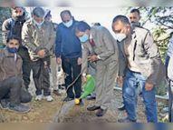 एचपीयू कैंपस में फलदार पौधे लगाए, पर्यावरण के संरक्षण का किया आह्वान|शिमला,Shimla - Dainik Bhaskar