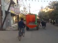 बिलासपुर में जिस गाड़ी में सवार थे BJP के सांसद और पूर्व मंत्री, उसके बैल के पीछे पड़ गया सांड़|बिलासपुर,Bilaspur - Dainik Bhaskar