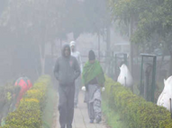कोहरे और ठंडी हवाओं के बीच आज से दिन में गिरेगा और रात को बढ़ेगा तापमान|चंडीगढ़,Chandigarh - Dainik Bhaskar