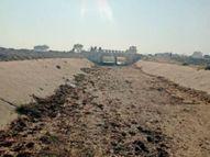 पानी नहीं छोड़े जाने से किसानों की फसल सूख रही हैंः भारद्वाज|भिंड,Bhind - Dainik Bhaskar
