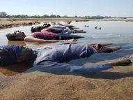 दृष्टिहीनों का किरदार निभाने आंखें बंद कर पानी-रेत पर बिताए 5 घंटे|छत्तीसगढ़,Chhattisgarh - Dainik Bhaskar