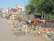 हड़ताल खत्म करने को न जिला प्रशासन गंभीर, न नगर परिषद आयुक्त और न ही सभापति|श्रीगंंगानगर,Sriganganagar - Dainik Bhaskar