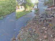 निकासी नहीं होने से नाले का गंदा पानी बदबू मार रहा, रहवासी परेशान|रियावन,Riyawan - Dainik Bhaskar