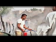 बारह भेड़ें जली, बीएसएफ जवानों ने पाया आग पर काबू बाड़मेर,Barmer - Dainik Bhaskar