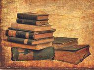 पुस्तक-प्रेमियों के लिए निजी पुस्तकालय किसी ख़ज़ाने से कम नहीं होता, इसलिए इसे अगली पीढ़ी के लिए सहेजना और इसके प्रति लगाव पैदा करना ज़रूरी है|मधुरिमा,Madhurima - Dainik Bhaskar