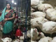 गोरखपुर की निर्मला के लिए 12 सदस्यों के परिवार का पेट भरना मुश्किल हुआ तो शुरू किया पोल्ट्री फार्म, अपने स्व सहायता समूह से महिलाओं को बनाया आत्मनिर्भर|लाइफस्टाइल,Lifestyle - Dainik Bhaskar