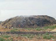 कचरे को सेग्रिगेट कर 1 साल में किया जाएगा खत्म, तीन कंपनियां आई सामने|मोहाली,Mohali - Dainik Bhaskar