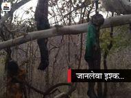 3 बच्चों की मां आधी उम्र के मुंहबोले देवर से कर बैठी प्रेम, पति रोड़ा बना तो बेटे को मार कर प्रेमी समेत फंदे पर झूल गई|रीवा,Rewa - Dainik Bhaskar