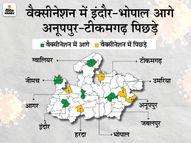 इंदौर, भोपाल, नीमच, ग्वालियर के बाद जबलपुर में भी 1% से ज्यादा कम्पलीट वैक्सीनेशन; टीकमगढ़-अनूपपुर नहीं बढ़ा पा रहे वैक्सीनेशन|भोपाल,Bhopal - Dainik Bhaskar