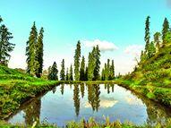 नारकंडा : मानों किसी ख़ूबसूरत तस्वीर में उतर आए ...|रसरंग,Rasrang - Dainik Bhaskar
