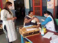 128 दिन बाद आए 250 से अधिक कोरोना पॉजिटिव, 5,462 ने लगवाया राहत का टीका|पानीपत,Panipat - Dainik Bhaskar